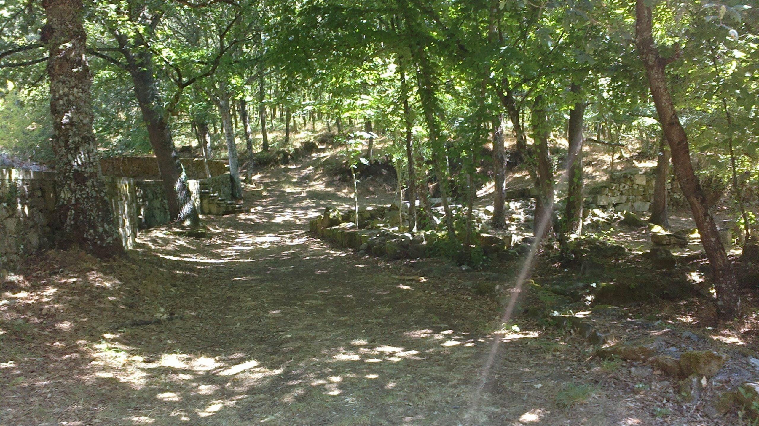 Mosteiro Bon Xesús. Merendero y bosque
